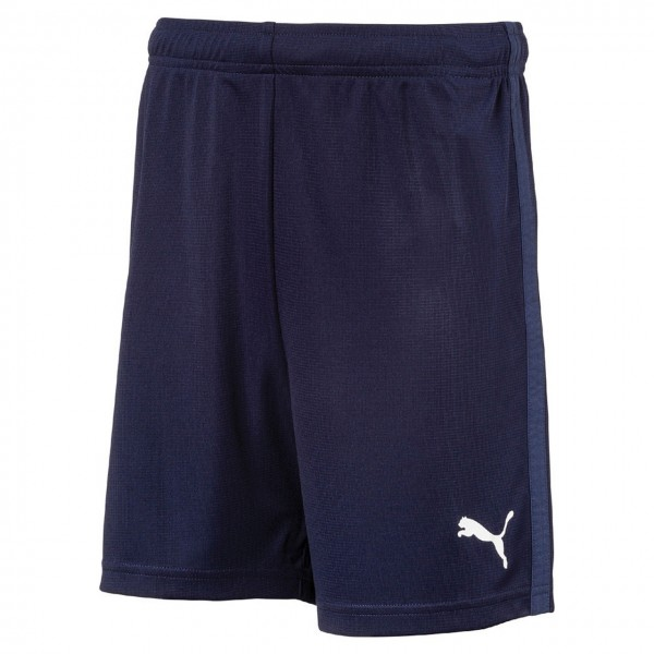 Puma LIGA Training Shorts Core Jr
