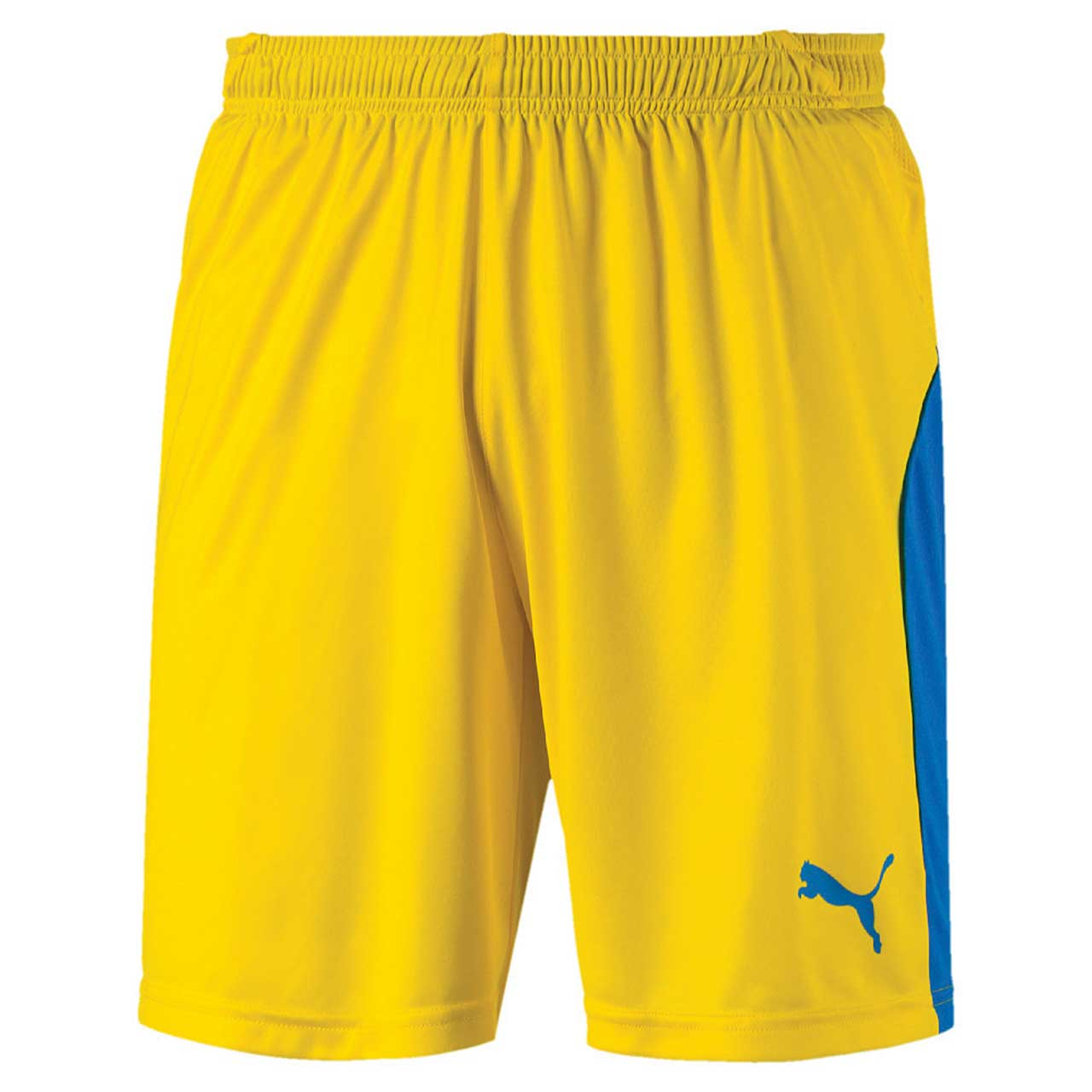Puma LIGA Shorts   Sport HAAS - Online