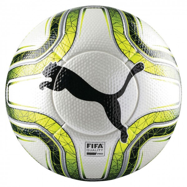Puma FINAL 1 Statement Gr5