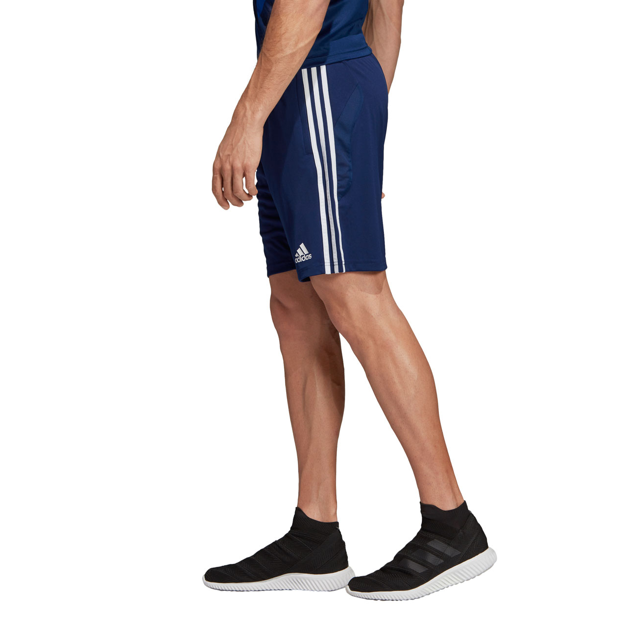 adidas Teamline Training Shorts
